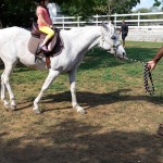 Pony Rides at the Equestrian Center in Grand Cayman