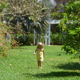 The Botanic Park is Grand Cayman's top destination for kids and families.