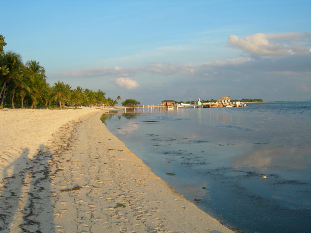 Little Cayman Views